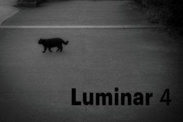 『Luminar4』で写真にウォーターマーク(コピーライト)を付ける方法を紹介【luminar 使い方】